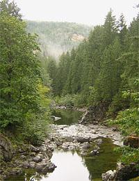 Koksilah River 5