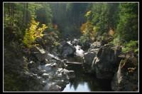 Koksilah River 4